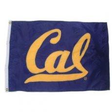 Flag/Banner Style #101nm