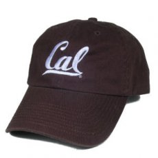 Adjustable Ballcap Style #508b chocolate