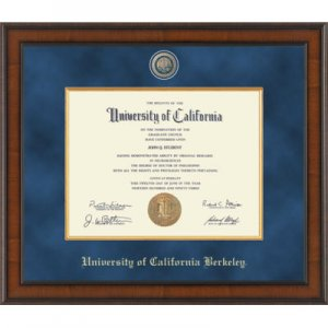 Presidential Masterpiece Diploma Frame in Madison Style #224831