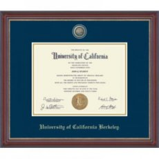 Masterpiece Medallion Diploma Frame in Kensington Gold Style #122305