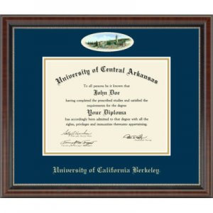 Campus Cameo Diploma Frame in Chateau Style #206374
