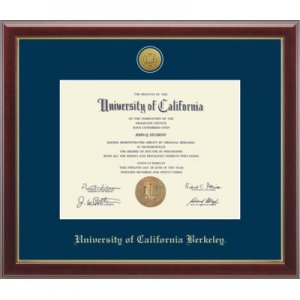 Gold Engraved Medallion Diploma Frame in Gallery Style #136105