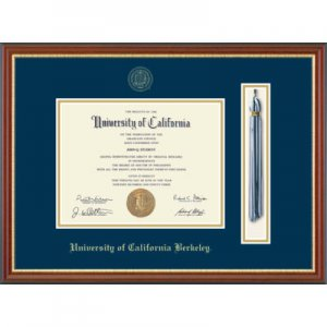 Tassel Edition Diploma Frame in Newport Style #136109