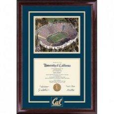 Spirit Stadium Diploma Frame in Encore Style #208652
