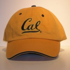 Adjustable Ballcap Style #534 gold