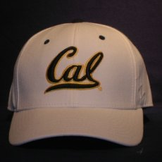 Fitted Ballcap Style DH white