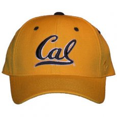Fitted Ballcap Style DH gold