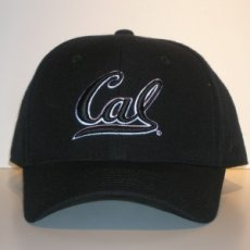 Fitted Ballcap Style DH black